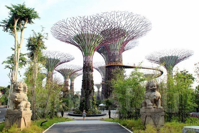Виза в Сингапур за 3 дня