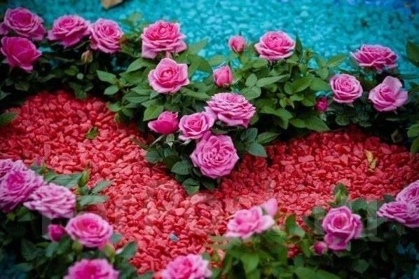 Декоративный цветной щебень для ландшафтных работ - Обустройство ...