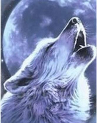 (вышивки) Волк и луна