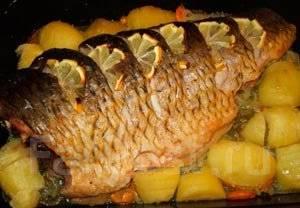 Блюда из сазана в духовке рецепты с фото