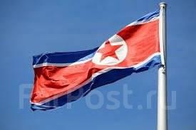 Ремонт квартир и офисов. Бригада из северной Кореи.
