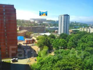 2-комнатная, улица Гульбиновича 29. Чуркин, агентство, 53 кв.м. Вид из окна днём