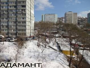 3-комнатная, улица Жигура 24. Третья рабочая, проверенное агентство, 66 кв.м. Вид из окна днём
