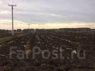Продаю земельный участок. 94 900 кв.м., собственность, электричество, от частного лица (собственник)