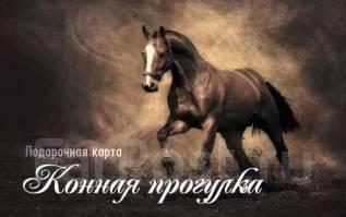 Подарочная карта на конную прогулку.