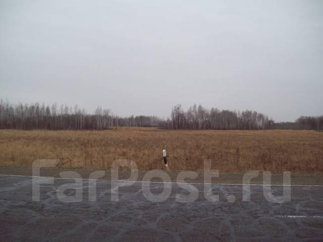 Земельный участок 20 га (район с. Князе-Волконское). 200 000 кв.м., собственность, от агентства недвижимости (посредник)