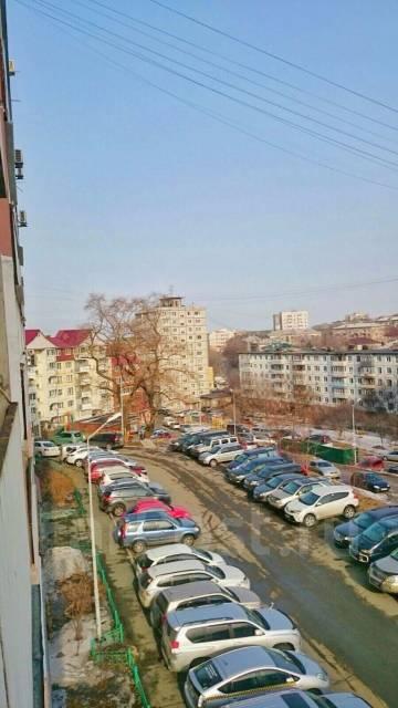4-комнатная, улица Вострецова 6в. Столетие, частное лицо, 86 кв.м. Вид из окна днём