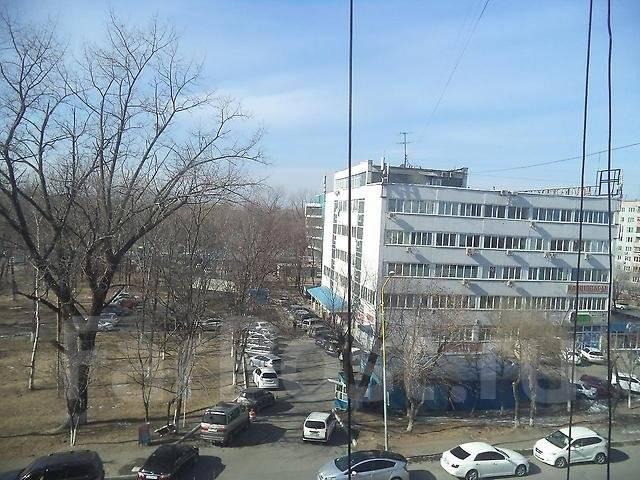 2-комнатная, улица Дзержинского 33а. Центр, 60 кв.м. Вид из окна днем