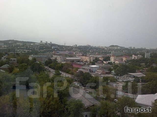 3-комнатная, улица Шепеткова 31/1. Луговая, агентство, 57 кв.м. Вид из окна днем