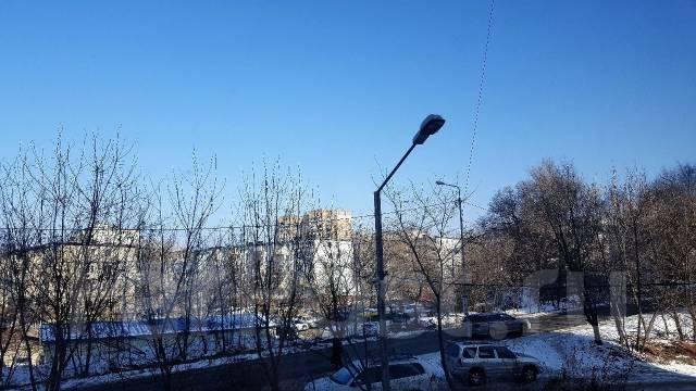 3-комнатная, улица Фирсова 8б. Столетие, агентство, 61 кв.м. Вид из окна днём