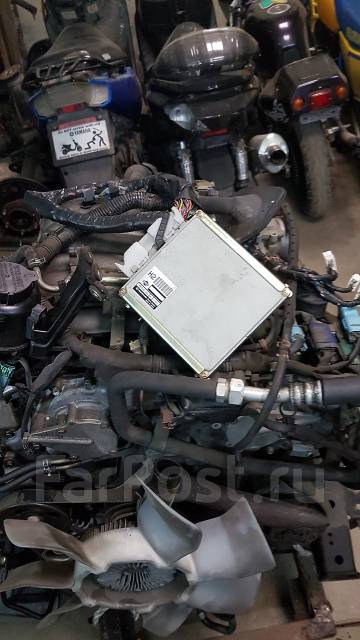 Двигатель. Nissan Elgrand, ATE50, APE50, AVWE50, AVE50, ALE50, ALWE50, APWE50, ATWE50 Двигатель VQ35DE