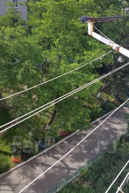 Гостинка, улица Тухачевского 48. БАМ, агентство, 23 кв.м. Вид из окна днём
