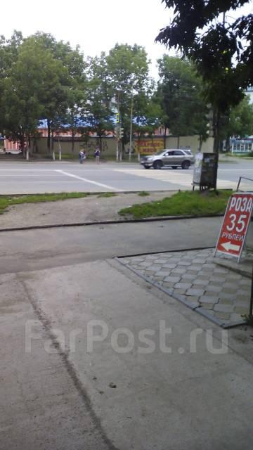 Гостинка, улица Кирова 59. 19 шк., агентство, 23 кв.м. Вид из окна днём