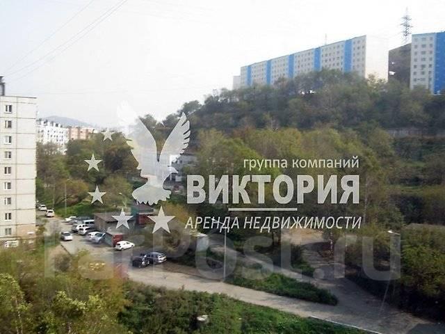 2-комнатная, проспект Красного Знамени 88. Толстого (Буссе), агентство, 56 кв.м. Вид из окна днем