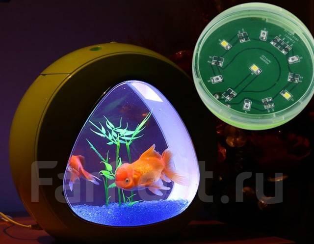Нано-аквариумы. Под заказ