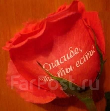 Цветы Дальнегорск