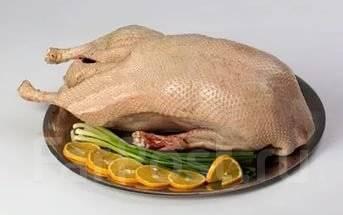 Продам мясо домашних уток и гусей