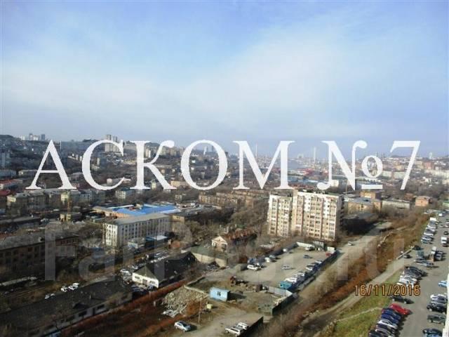 1-комнатная, улица Ватутина 4д. 64, 71 микрорайоны, агентство, 43 кв.м. Вид из окна днём