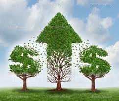 Требуется займ для развития организации