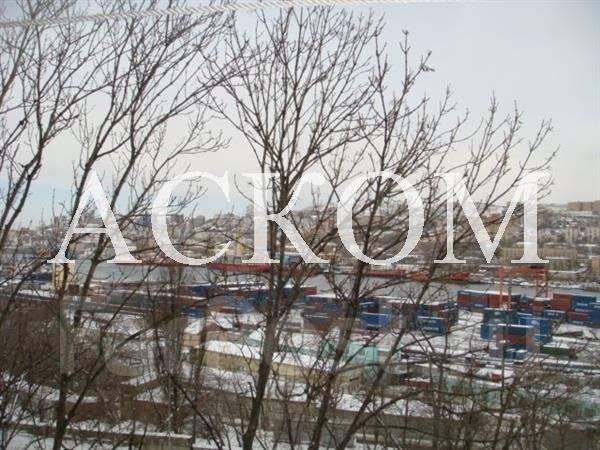 3-комнатная, улица Вилкова 10. Трудовая, агентство, 62 кв.м. Вид из окна днём