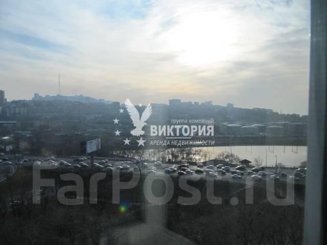 2-комнатная, проспект 100-летия Владивостока 14. Столетие, агентство, 46 кв.м. Вид из окна днем