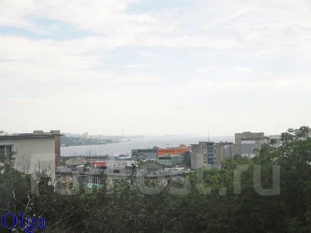 1-комнатная, улица Кирова 14. Вторая речка, агентство, 24 кв.м. Вид из окна днем
