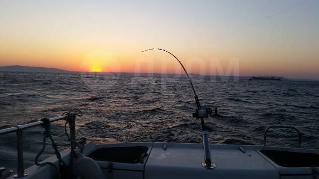 Аренда катера. Рыбалка. Экскурсии. Рейд. Отдых на островах. 6 человек, 40км/ч