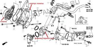 Помпа водяная. Honda CR-V, RD5 Honda Civic Двигатели: K20A4, K20A5, K24A1, 4EE2, D14Z5, D14Z6, D15Y3, D16V1, D16V3, D16W7, D17A5, K20A3, K20A