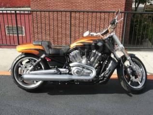 Harley-Davidson V-Rod Muscle VRSCF. 1 250куб. см., исправен, птс, без пробега
