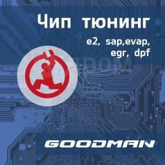 ЧИП-тюнинг Вашего авто! Отключение EGR, SAP, EVAP, DPF.