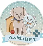 Асистент ветеринарного врача