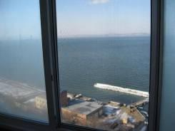 Квартира. Вид из окна днем