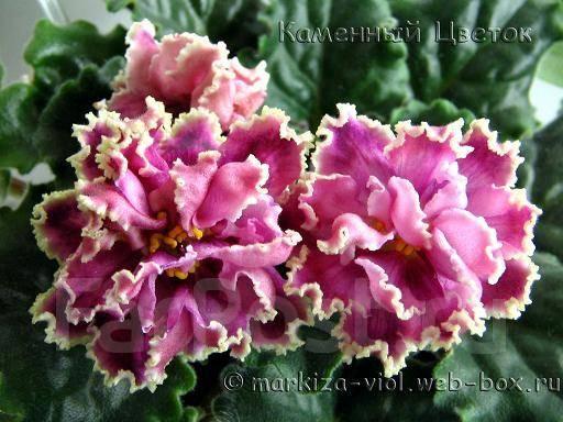 фото дизайны цветы из ткани