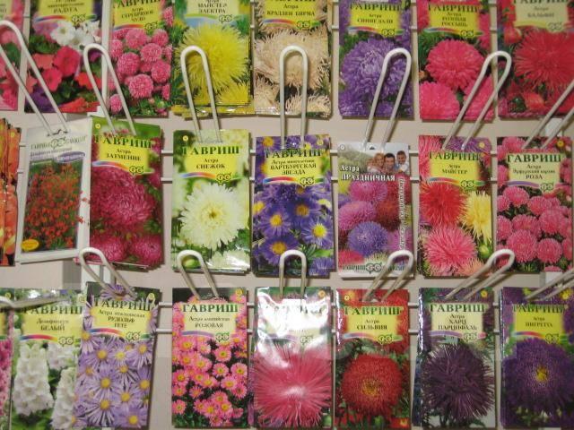 Цветочные и декоративные растения.