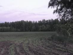 Срочно продается земельный участок 25,5 га. 250 000кв.м., собственность, электричество, вода
