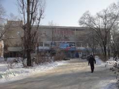 Действующий бизнес-Торговый центр в г. Арсеньеве
