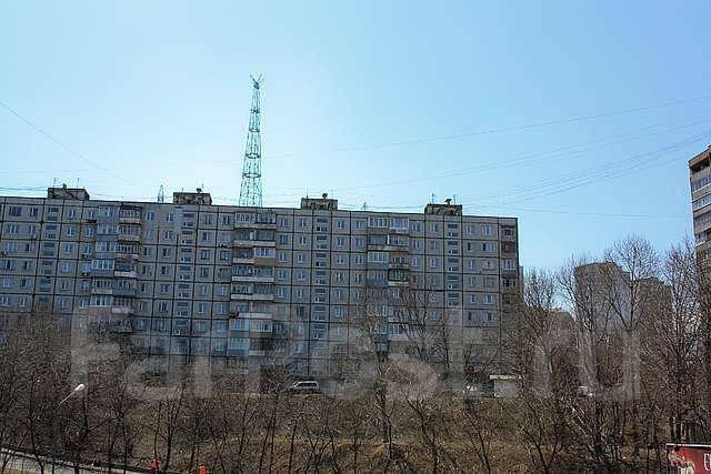 2-комнатная, проспект Красного Знамени 109. Толстого (Буссе), 50кв.м. Вид из окна днем