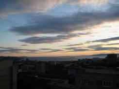 3-комнатная, улица Давыдова 42а. Вторая речка, частное лицо, 90 кв.м. Вид из окна днем