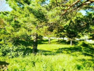 Продам земельный участок в загородном поселке Сказка. 1 300 кв.м., собственность, от частного лица (собственник)