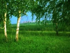 Продам землю 5 км. от Солнечного. 1 200кв.м., собственность, электричество, вода