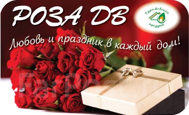 Дв роза владивосток адреса