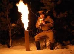 Огни Лебедева.