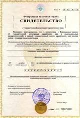 Регистрация ООО, ИП.