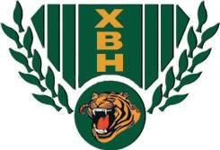 Вездеход XBH 8X8-2. 812куб. см.