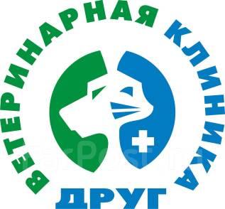 Вызов ветеринарного врача на дом (Бесплатная Консультация он-лайн)