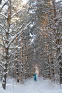 Зима в Ружино 23-26 февраля 2017 - праздник по карману! .