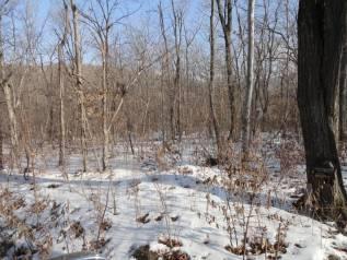 Продаётся земельный участок, Выселковая, собственность. 827 кв.м., собственность, от агентства недвижимости (посредник). Фото участка