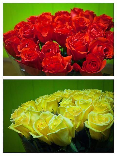 Доставка цветов в артеме роза дв, интернет магазин цветы из натуральных камней