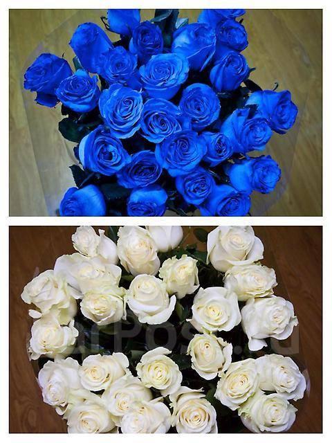 Доставка цветов в артеме роза дв 2
