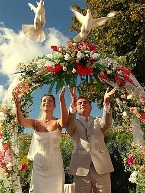 Голуби, белые, на свадьбу, торжество, событие и др. 500 руб